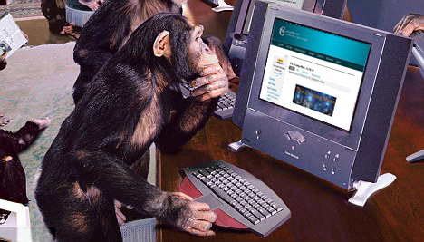 MonkeyTeam.png