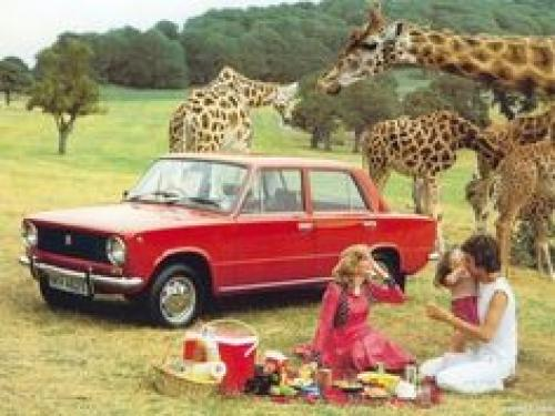 Giraffe Picnic f4fdf03e4987dfb246f9956ff39eace3[1].jpg