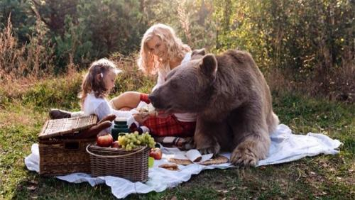 Bear brown-bear-dines-with-girl-and-her-mum-at-a-real-life-teddy-bears-picnic-136401732978203901-151119115912[1].jpg