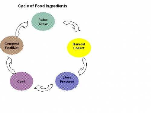 food cycle.JPG
