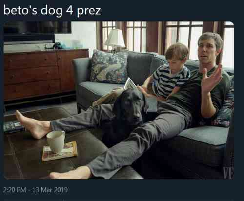Beto's Dog Photo.JPG