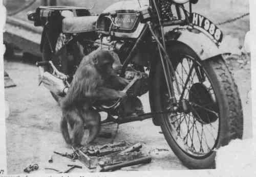 monkey wrench.jpg