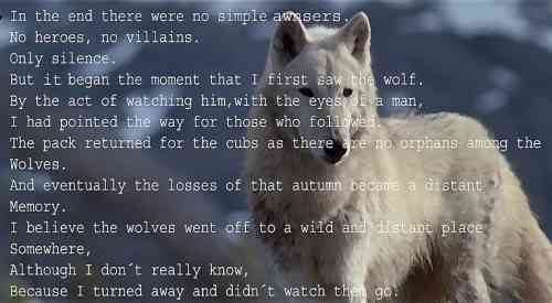 never cry wolf.jpg