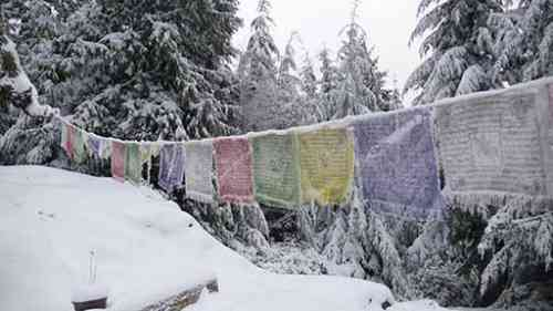 Blog Prayer Flags_1.jpg
