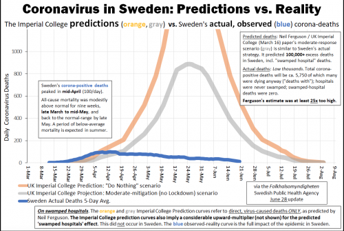 Sweden Covid death v. prediction.png