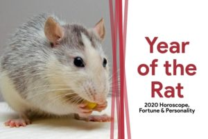 Year-of-the-Rat-1-300x200.jpg