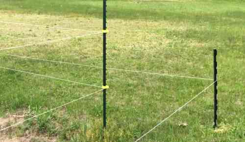electric fence.jpg