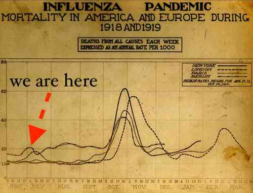 spanish_flu_death_chart.jpg